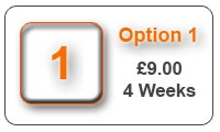 Option1 4 Week Advert