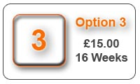 Option 3 16 Week Advert
